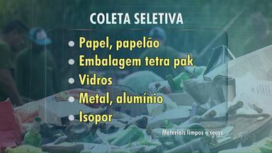 Veja os materiais que podem ser destinados à coleta seletiva - A orientação é colocar os materiais em sacos transparentes e colocá-los na parte de baixo da lixeira.
