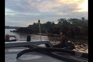 Sefa apreende duas balsas com madeira irregular no rio Pará - Sefa apreende duas balsas com madeira irregular no rio Pará