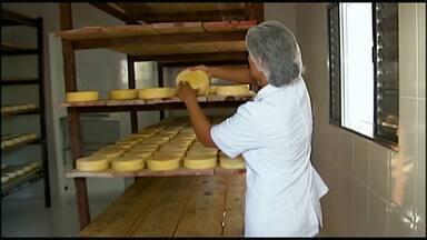 Produtores de queijo artesanal recebem certificado de qualidade em São Roque de Minas - José Leite, Onésio Silva e Arnaldo Pinto se juntam a outros 254 profissionais que têm o documento do Sistema Brasileiro de Inspeção de Produtos de Origem Animal (Sisbi-POA).