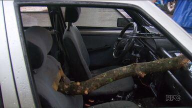 Árvore atravessa o banco do passageiro de um carro e por pouco não atinge criança - O acidente foi em Maringá, por causa das fortes chuvas.