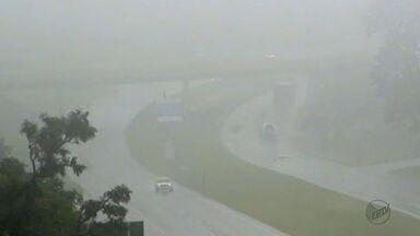 Confira dicas para dirigir com segurança sob neblina nas estradas - Mudança no clima exige mais atenção do motorista.