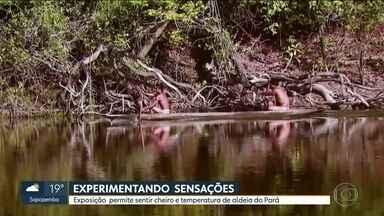 """Exposição virtual mostra como conhecer um tribo indígena do Pará em sair de São Paulo - A exposição """"A Experiência Munduruku"""" está rolando no Centro Cultural dos Correios."""