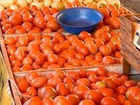 Ingredientes utilizados para fazer vinagrete estão mais baratos - Caíram os preços da cebola, do tomate e do vinagre.