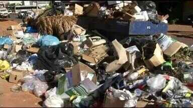 Acúmulo de lixo chama atenção e causa mal cheiro em frente rodoviária de Araguaína - Acúmulo de lixo chama atenção e causa mal cheiro em frente rodoviária de Araguaína