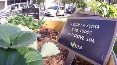 Zeca Camargo apresenta projeto de horta urbana - O apresentador conheceu um projeto que criou hortas pelas ruas de São Paulo, para as pessoas colherem o que quiserem