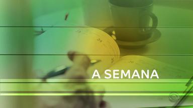 Confira o que foi assunto no agronegócio nesta semana - Em Uruguaiana, nova safra de arroz tem boa produção.
