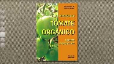 Tomates: como combater pragas e doenças - O telespectador Alexsandro Galvão, de São Luís (MA), está tentando cultivar tomates e perguntou ao Globo Rural como combater fungos e lagartas no sistema orgânico.