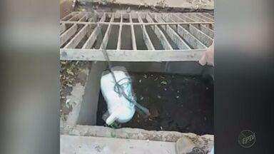 Polícia prende traficante que escondia drogas em bueiro em Ituverava, SP - Dentro de um pote foram encontradas 400 trouxinhas de maconha.