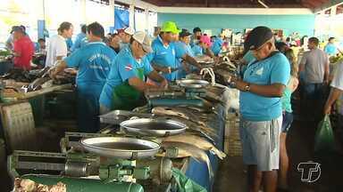 Entidades e pescadores finalizam diagnóstico para nortear Plano de Pesca no Baixo Amazonas - Pescadores analisaram as peculiaridades de localidades da região. Expectativa é que o plano esteja totalmente pronto até o fim de 2017.