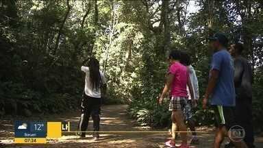 Trilha em parque no Capão Redondo é opção de passeio durante as férias de julho - O Parque Santo Dias oferece passeio em trilha monitorada aos visitantes. O passeio é gratuito.