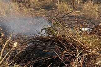 Mogi tem aumento nas ocorrências de fogo em mato, diz Bombeiro - Só nesse fim de semana, em Mogi das Cruzes, foram 59 ocorrências registradas de fogo em mato pelo Corpo de Bombeiros. Com o tempo seco, a situação piora ainda mais.
