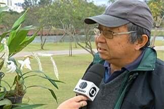 Mogi tem inscrições para curso de cuidados com orquídeas - Em Mogi das Cruzes estão abertas as inscrições para um curso sobre o cultivo de orquídeas. O evento será no Parque Centenário.