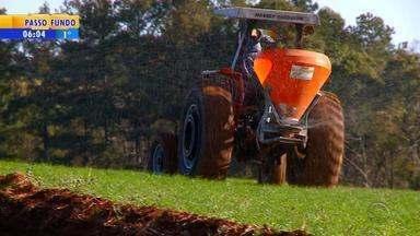 Chuva e frio devem ajudar desenvolvimento de trigo no RS - Produtores do grão comemoram mudança no tempo em Santa Maria.