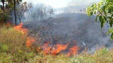 Baixo índice da umidade relativa do ar favorece aumento de queimadas - Baixo índice da umidade relativa do ar favorece aumento de queimadas