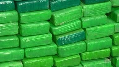 Polícia encontra 127 kg de drogas em lava-rápido e prende dono em Campinas - Estabelecimento era alvo de investigações há um mês. Homem de 35 anos já tem passagem por porte ilegal de arma e vai responder por tráfico de drogas.
