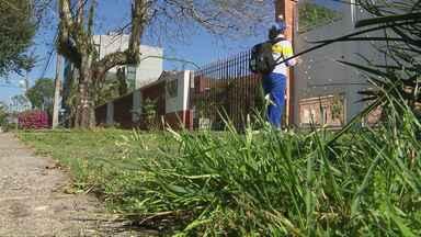Número de casos de dengue cai no Paraná - Segundo a secretaria estadual de Saúde, é o menor número de casos registrado desde 2010. Os dados são de agosto do ano passado até julho deste ano.