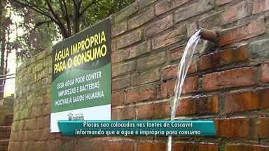 Prefeitura instala placas sobre situação da água das fontes em Cascavel - A água de todas as fontes está imprópria para o consumo.