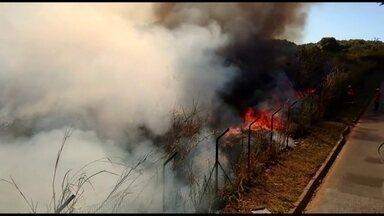 Incêndio na vegetação próxima ao Setor de Oficinas Sul mobiliza grande equipe de bombeiros - Segundo os bombeiros, foram deslocados 14 homens e quatro viaturas para dar conta de controlar o fogo.