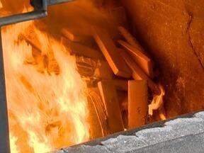 Mais de 9 toneladas de drogas são incineradas em Presidente Prudente - Entorpecentes foram apreendidos em Anhumas nesta terça-feira (1º).