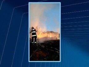 Incêndio atinge área de pastagem em Junqueirópolis - Fogo consumiu 3 mil metros quadrados do local.