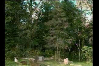 Projeto para revitalizar a Árvore Lunar de Santa Rosa, RS - Força-tarefa na cidade busca a melhoria do espaço para atrair turistas.