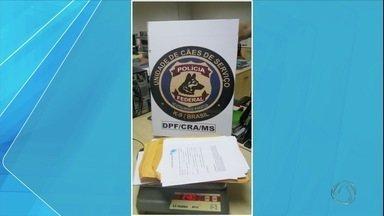 Peruano é preso com cocaína impregnada em papéis em MS - Polícia Federal fez o flagrante no fim de semana. Cão farejador ajudou nas buscas.