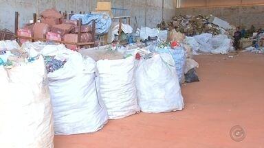 Birigui implanta sistema de coleta de lixo seletiva na cidade por exigência da Cetesb - Uma boa notícia para o meio ambiente. A cidade de Birigui (SP) implantou no início do mês a coleta de lixo seletiva na cidade. Por enquanto são apenas 13 bairros, mas a meta é abranger a cidade toda. A implantação do sistema em toda a cidade é uma exigência da Cetesb para que o município continue usando o aterro sanitário. O prazo da prefeitura começou a correr em junho.