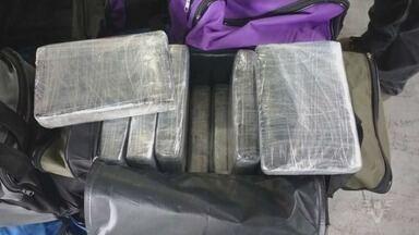 Quase 600 kg de cocaína são apreendidos no Porto de Santos - Segundo autoridades federais, droga tinha como destino a Europa.