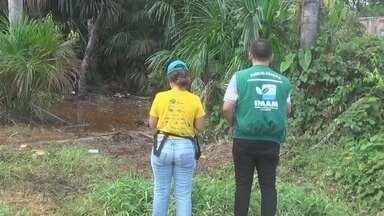 Ipaam vistoria área onde ocorreu vazamento de diesel no AM - Problema ocorreu na cidade de Nova Olinda