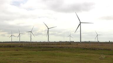 Inaugurado em Viamão parque eólico com investimento de R$ 330 milhões - Estrutura já está em funcionamento em Águas Claras. São 25 aero-geradores, com capacidade de 59,8 megawatts de potência, capazes de gerar energia para 140 mil residências.