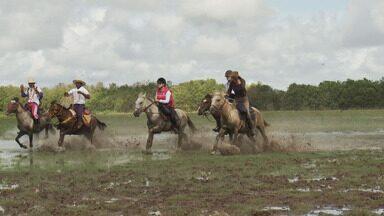 Cavalgada na Ilha de Marajó - Repórteres atravessam rios e mostram a natureza na maior ilha costeira do Brasil.