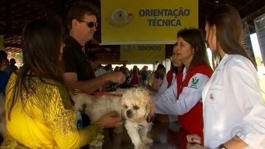 Araçatuba recebe mais uma edição do Estimacão neste domingo - Recado para todo mundo da região de Araçatuba (SP) que gosta de bichos de estimação. É domingo o Estimacão, o evento pet da TV TEM.