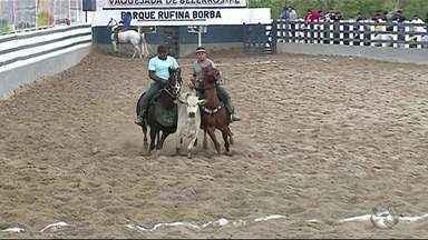 Vaquejada de Bezerros segue até o domingo (20) - Competições acontecem no Parque Rufina Borba