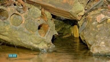 Família de Cuiabá tem uma nascente de água dentro de casa - Família de Cuiabá tem uma nascente de água dentro de casa.