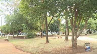 Homem tem celular roubado em praça nos Campos Elíseos em Ribeirão Preto - No 2º Distrito Policial, foram registrados 171 boletins de ocorrência desse crime em julho.