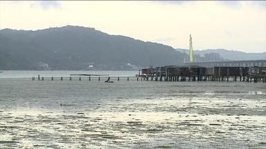 Maré baixa torna aparente os destroços de um navio naufragado há 63 anos em Florianópolis - O mar recuou até 50 metros em alguns pontos do litoral de SC. Não existe registro de maré mais baixa que essa no estado.
