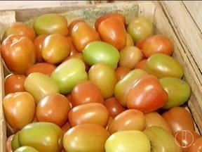 Variações climáticas do Norte de Minas afetam produção e preço das frutas e verduras - Crise financeira também afeta diretamente esse mercado.