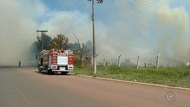 Incêndio atinge depósito de galhos da prefeitura de Ourinhos - Área fica ao lado do aeroporto e de uma associação que cuida de animais abandonados. Máquinas da prefeitura foram utilizadas para evitar que as chamas se alastrassem.