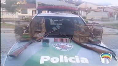 Polícia ambiental apreendeu três aves silvestres e duas espingardas em Areias - Dono foi multado em R$ 1,5 mil.