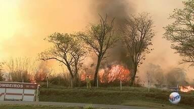 Queimada dá trabalho aos bombeiros no Anel Viário Norte em Ribeirão Preto, SP - Fogo atingiu um matagal ao lado da Usina Galo Bravo.