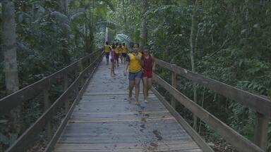 Crianças visitam Parque Natural de Porto Velho - Escolas têm programado visitas ao parque.