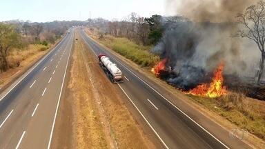 Parque Altamiro Pacheco é atingido por queimada, em Goiás - Incêndio dura mais de uma semana e destruiu quase a metade da área preservada.