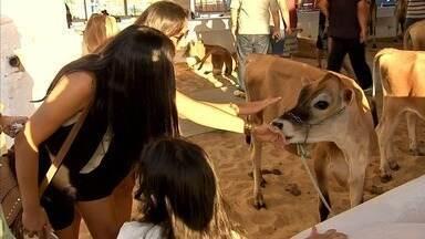 Expoece segue até este domingo no Parque de Exposições César Cals - Veja mais em g1.com.br/ce