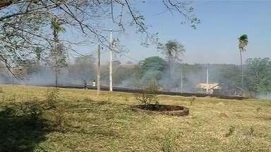 Noroeste paulista registra mais de 120 queimadas no feriado prolongado - De acordo com informações da Polícia Militar Ambiental, mais de 120 queimadas foram registradas durante o feriado prolongado no noroeste paulista.
