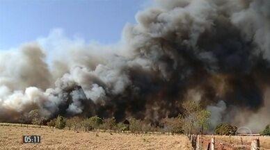 Tempo seco causa focos de incêndio em plantações e matas em algumas regiões do país - A fumaça provocada pelo fogo tirou a visibilidade dos motoristas que trafegavam pela BR-452 em Itumbiara, Goiás. Confira também como fica o tempo nesta quarta-feira (13) pelo Brasil.