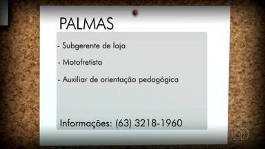 Veja as vagas de emprego em Palmas, Porto Nacional e Gurupi - Veja as vagas de emprego em Palmas, Porto Nacional e Gurupi