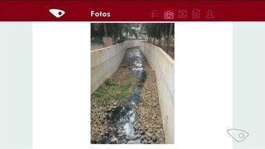 Moradora reclama de mosquitos trazidos por obra em São Gabriel da Palha, ES - Prefeitura disse que está fazendo o que pode para combater os pernilongos.