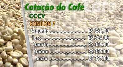 Confira a cotação do café no Espírito Santo - O café Conilon tipo 7 abriu a semana em R$ 385 a saca.