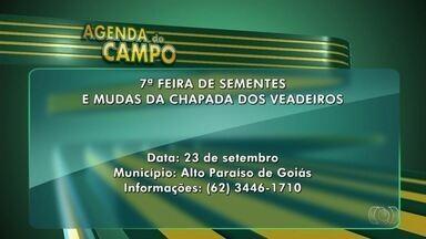 Confira a agenda do campo desta semana em Goiás - Goiânia sedia a 10ª Conferência Internacional de Pecuaristas.
