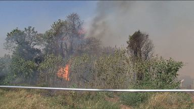 Queimadas aumentam no noroeste do estado - A combinação de tempo seco e ventos fortes ajuda a alastrar as chamas.